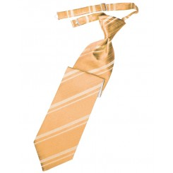 Apricot Striped Satin Long Tie