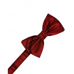 Apple Striped Satin Bowtie
