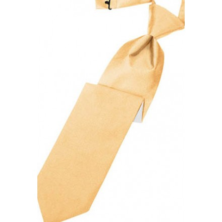 Apricot Solid Satin Long Tie