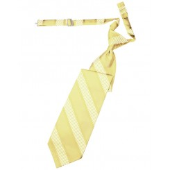Buttercup Venetian Stripe Long Tie