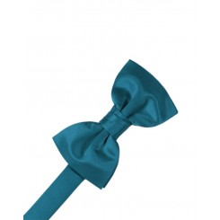 Oasis Solid Satin Bowtie