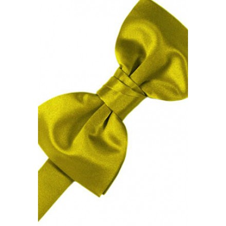 Willow Solid Satin Bowtie