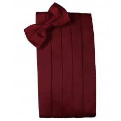 Apple Solid Satin Cummerbund