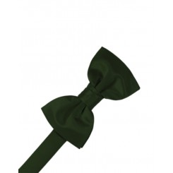 Holly Solid Satin Bowtie