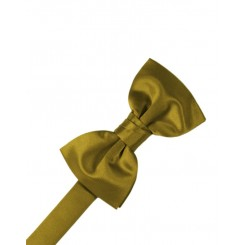 New Gold Solid Satin Bowtie