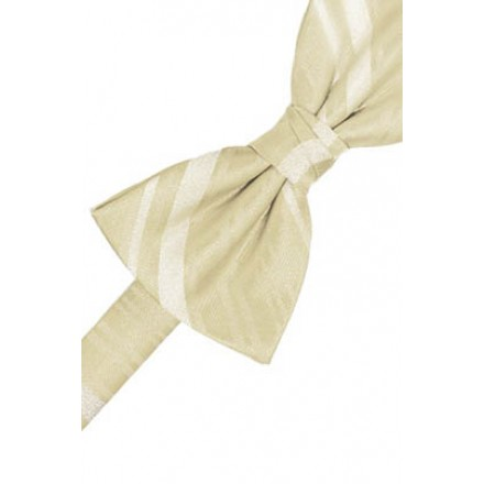 Bamboo Striped Satin Bowtie