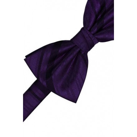 Amethyst Striped Satin Bowtie
