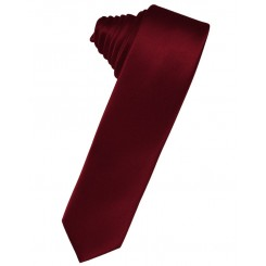 Apple Solid Satin Skinny Suit Tie