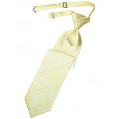 Banana Striped Satin Long Tie