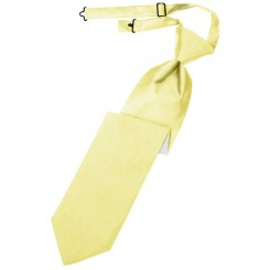 Canary Solid Satin Long Tie