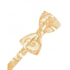 Apricot Tapestry Bowtie